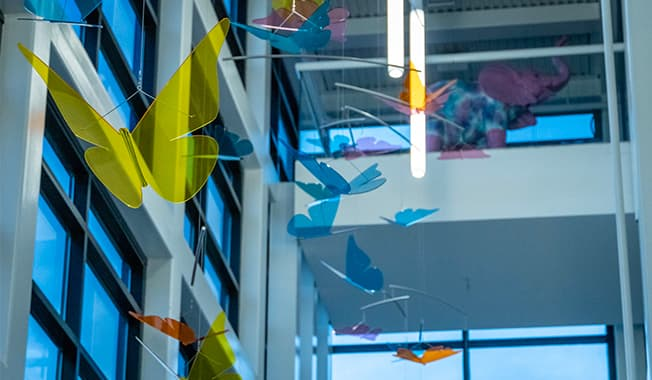 Butterflies hanging from the ceiling in Nemours children's clinic in Jacksonville FL.